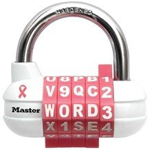 1534DPNK Breast Cancer Awareness Lock (Discontinued)
